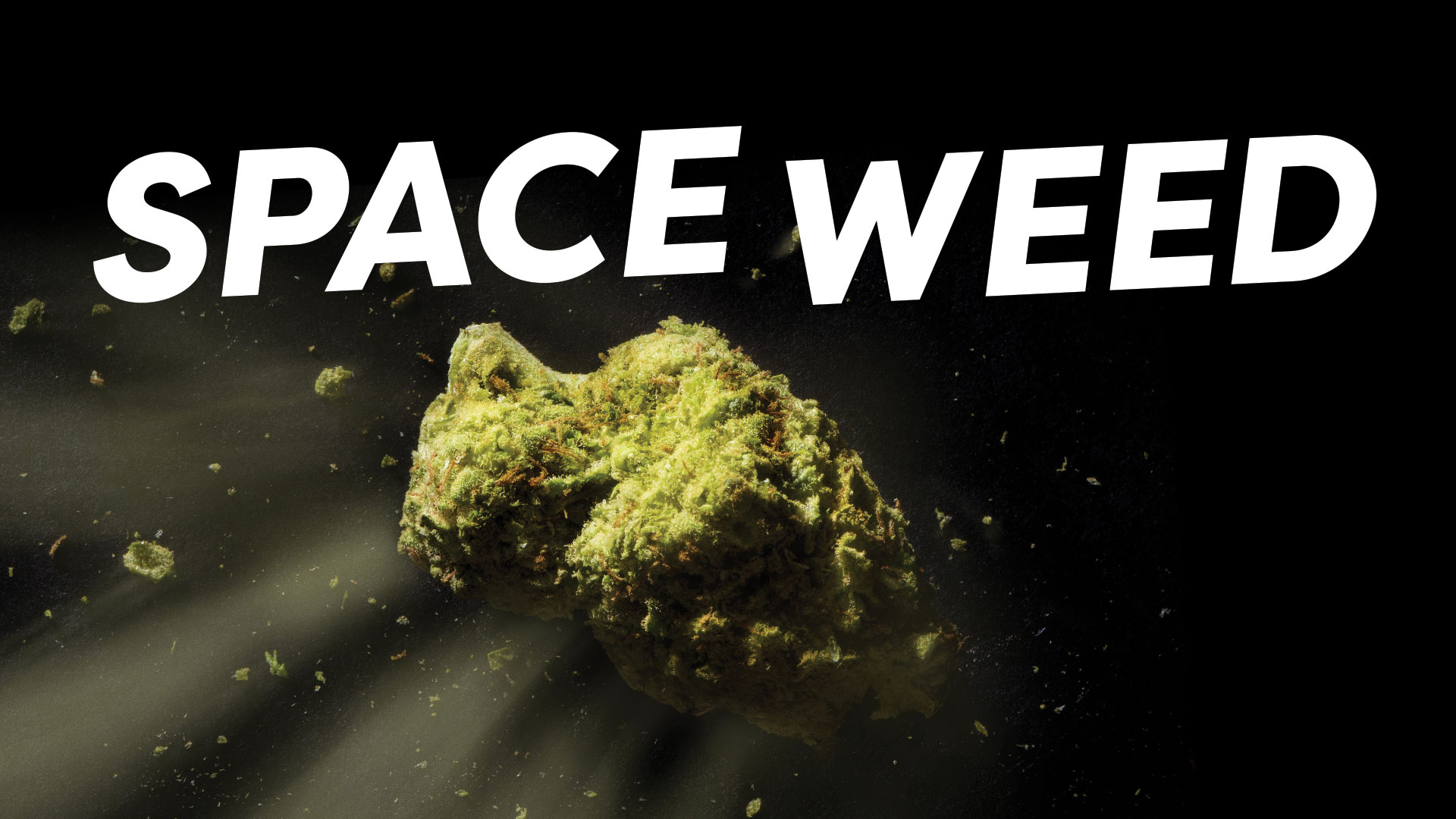 Space Weed logo and background image of cannabis nug made to look like asteroid in space.